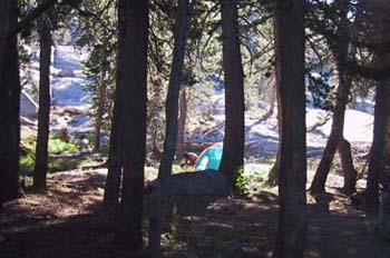camping sierra forest granite
